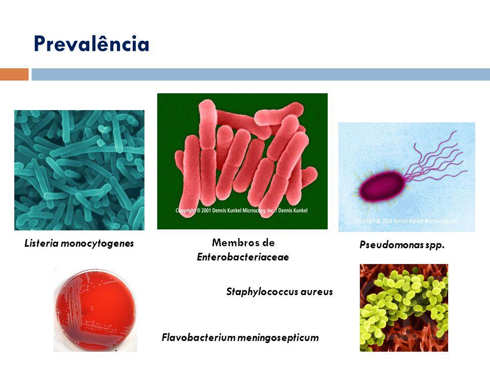 Prevalência Listeria monocytogenes Membros de Enterobacteriaceae