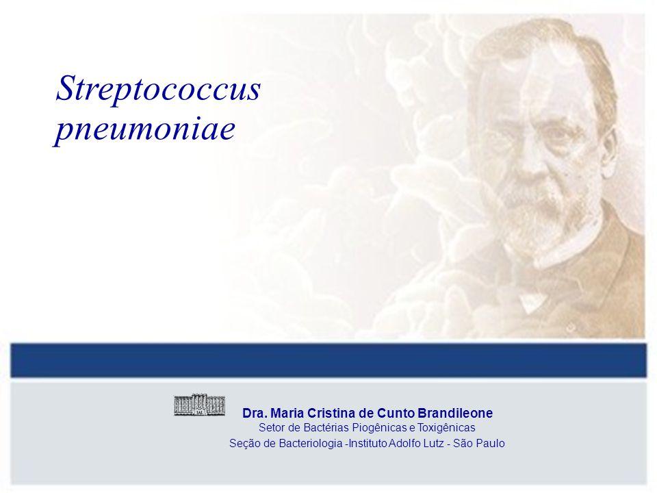 Seção de Bacteriologia -Instituto Adolfo Lutz - São Paulo