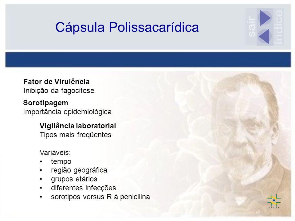 índice sair Cápsula Polissacarídica Fator de Virulência