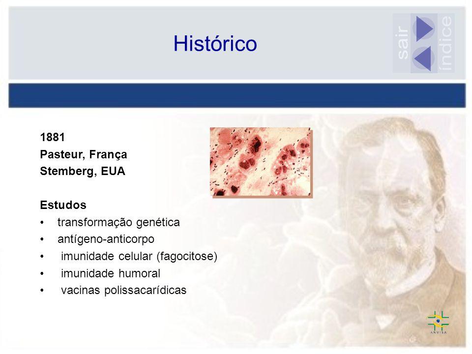 índice sair Histórico 1881 Pasteur, França Stemberg, EUA Estudos