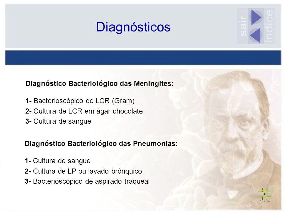 índice sair Diagnósticos Diagnóstico Bacteriológico das Meningites: