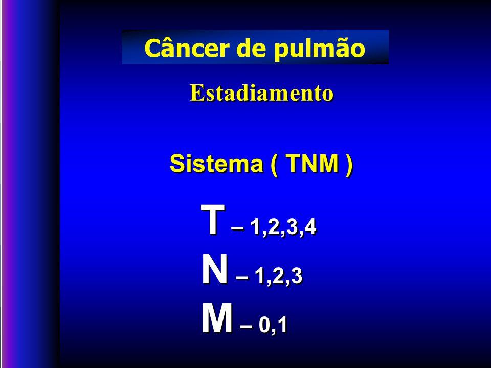 T – 1,2,3,4 N – 1,2,3 M – 0,1 Câncer de pulmão Estadiamento