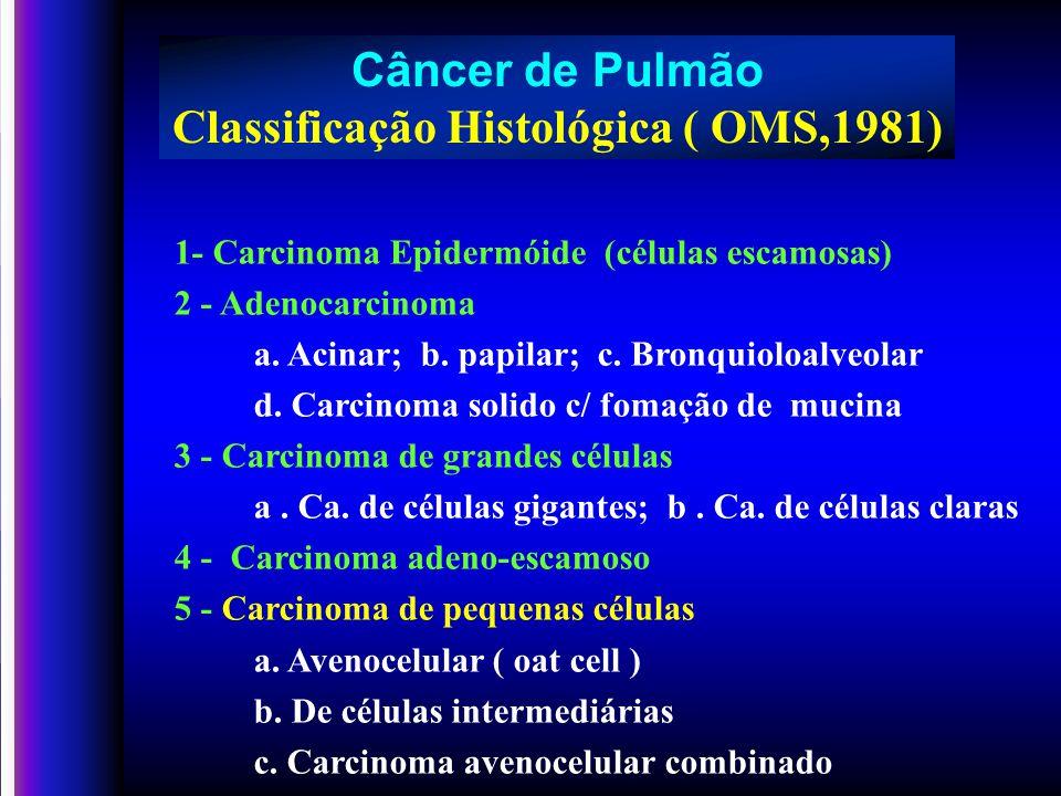 Classificação Histológica ( OMS,1981)