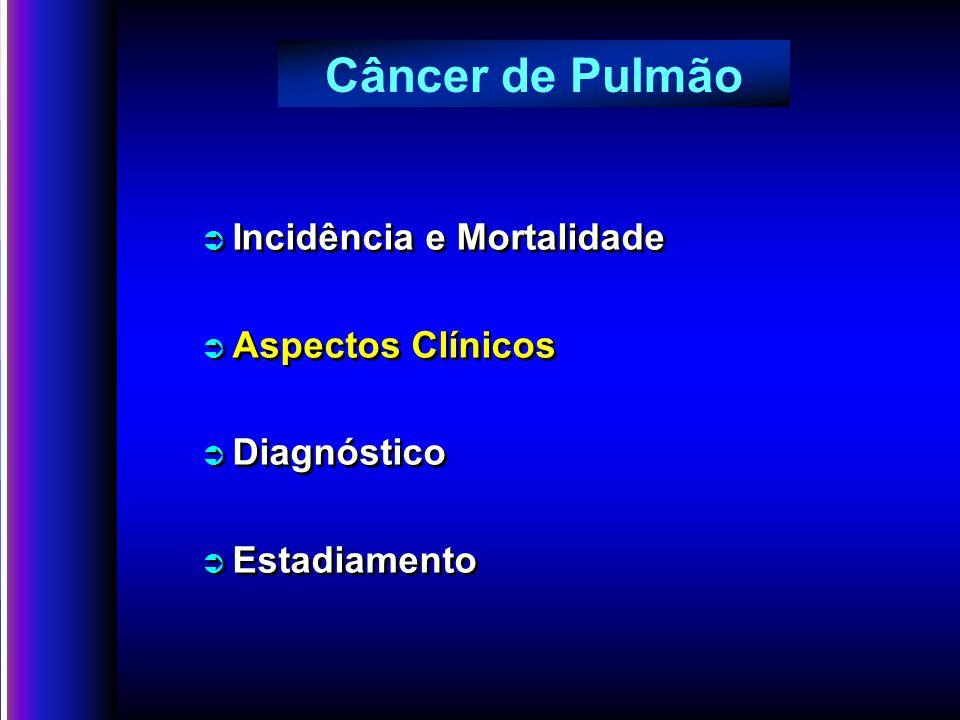 Câncer de Pulmão Incidência e Mortalidade Aspectos Clínicos