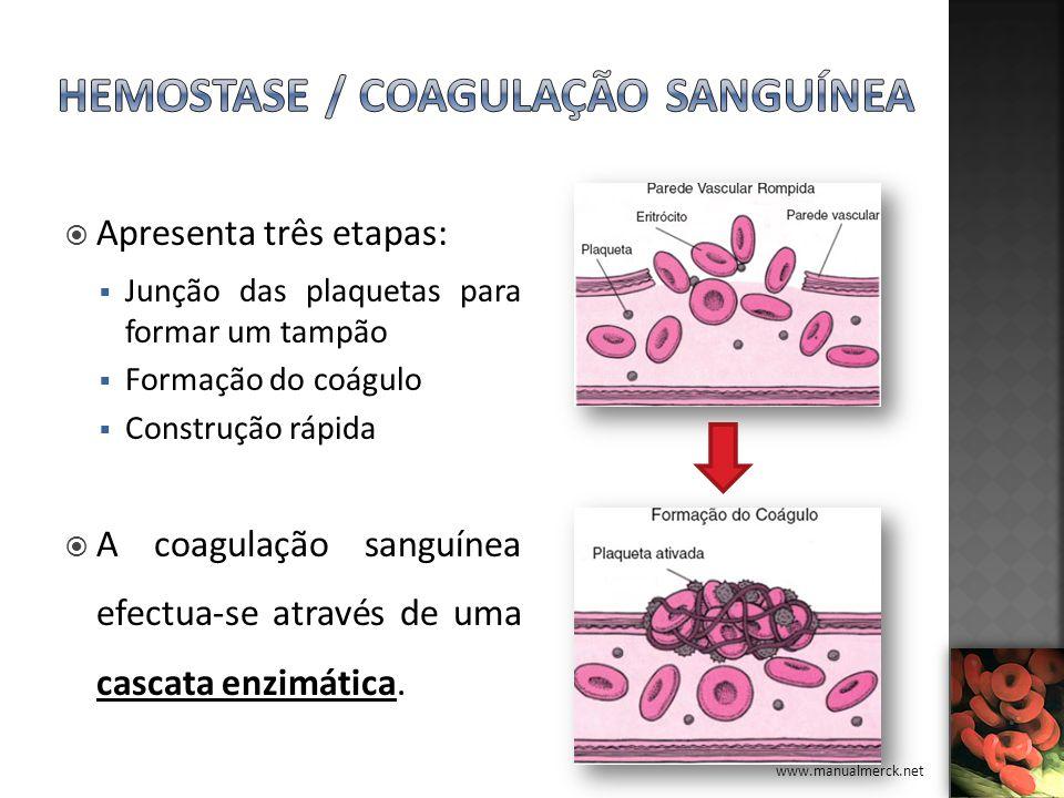 Hemostase / Coagulação Sanguínea