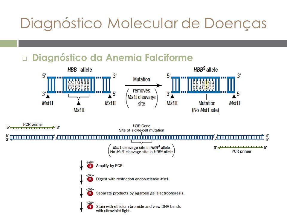 Diagnóstico Molecular de Doenças