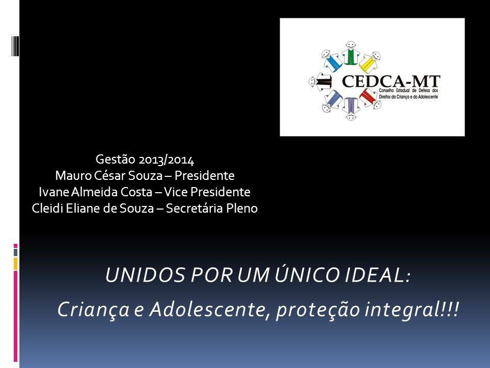 UNIDOS POR UM ÚNICO IDEAL: Criança e Adolescente, proteção integral!!!