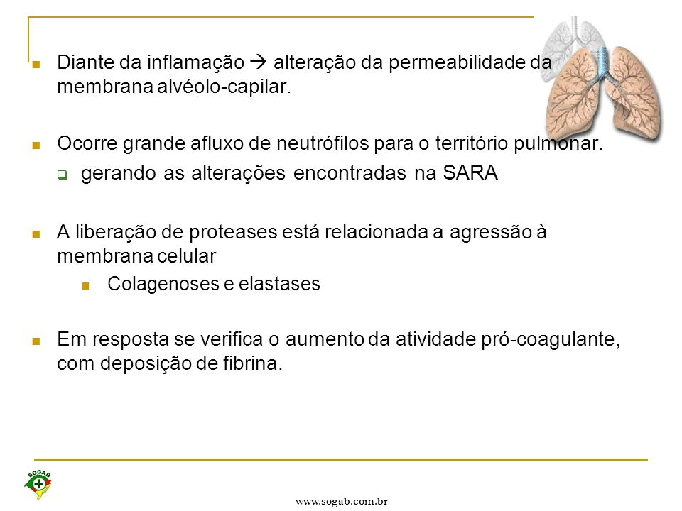 gerando as alterações encontradas na SARA