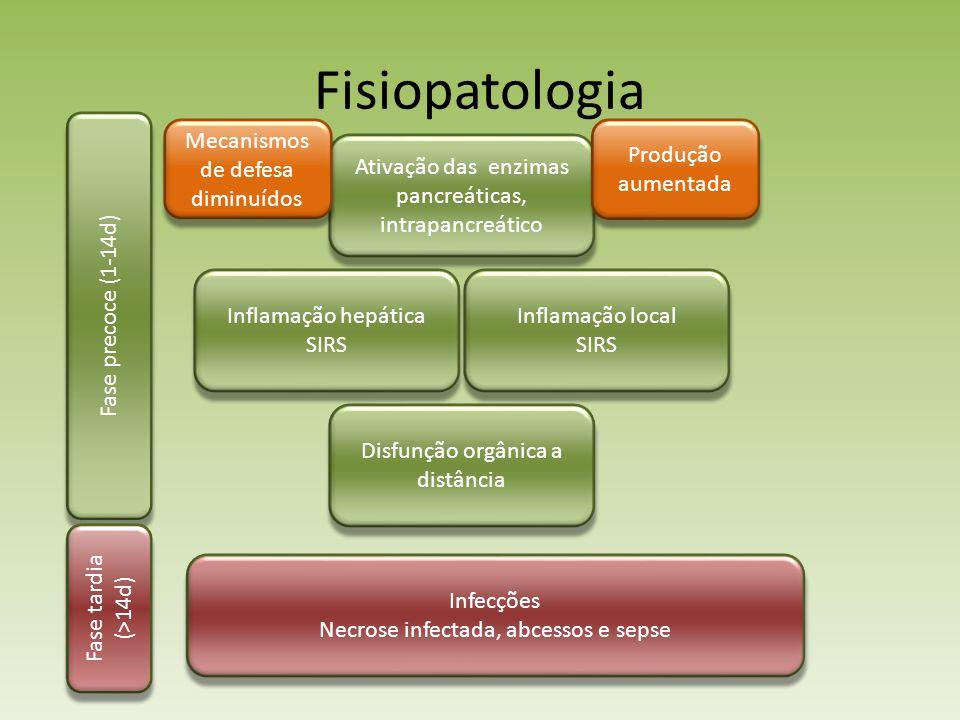 Fisiopatologia Fase precoce (1-14d) Mecanismos de defesa diminuídos