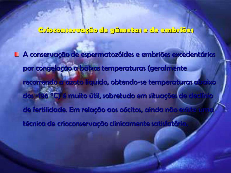 Crioconservação de gâmetas e de embriões