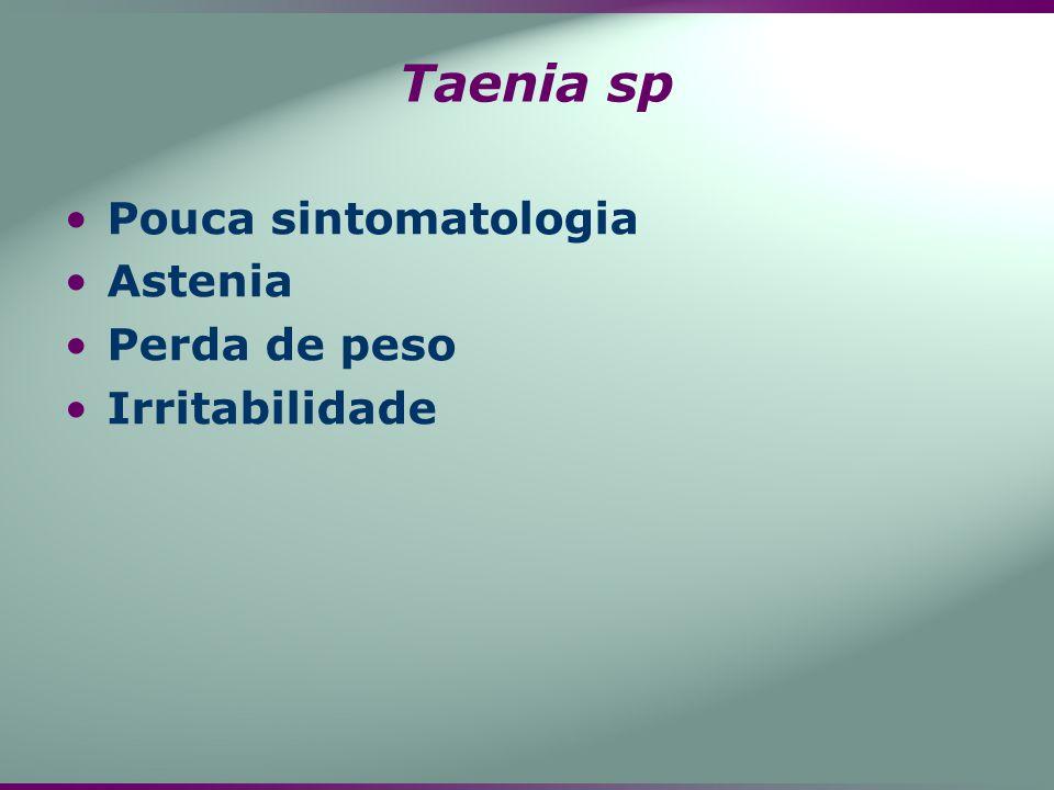 Taenia sp Pouca sintomatologia Astenia Perda de peso Irritabilidade