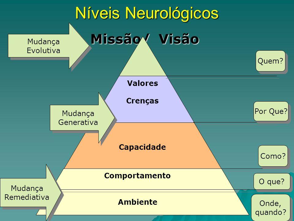 Níveis Neurológicos Missão/ Visão Mudança Evolutiva Quem Valores