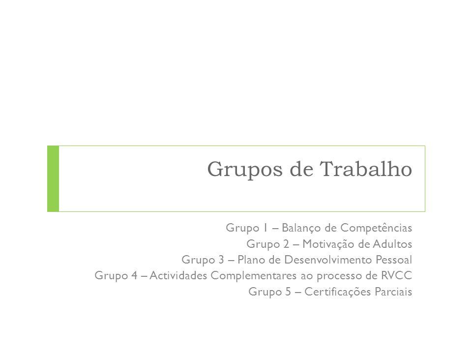 Grupos de Trabalho Grupo 1 – Balanço de Competências