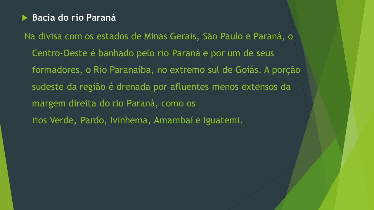 Bacia do rio Paraná