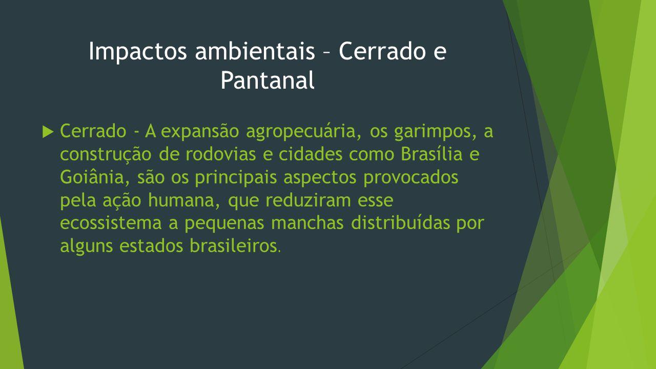 Impactos ambientais – Cerrado e Pantanal