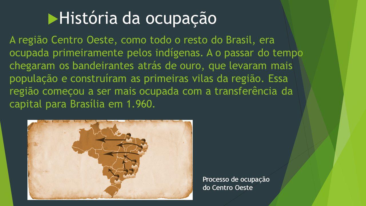 História da ocupação