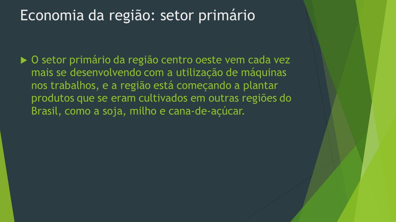 Economia da região: setor primário