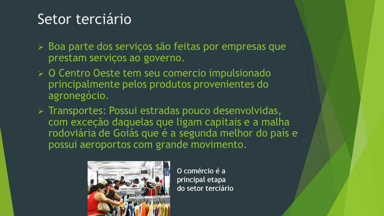 Setor terciário Boa parte dos serviços são feitas por empresas que prestam serviços ao governo.