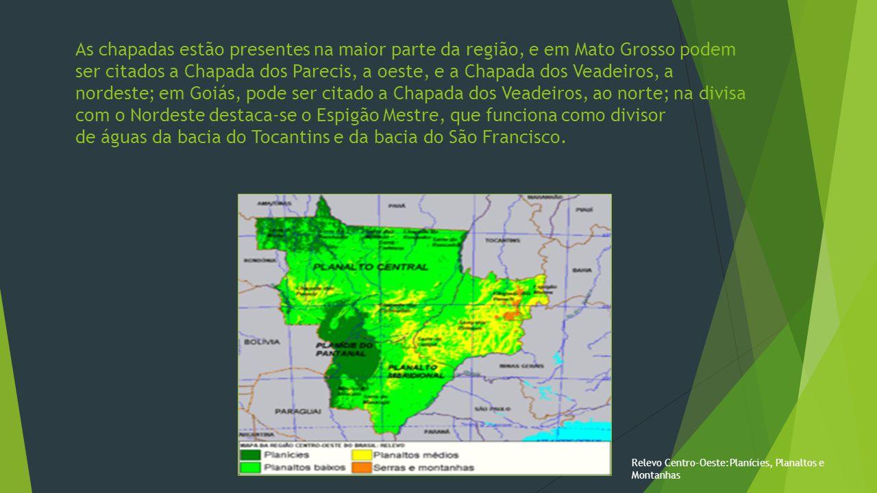 As chapadas estão presentes na maior parte da região, e em Mato Grosso podem ser citados a Chapada dos Parecis, a oeste, e a Chapada dos Veadeiros, a nordeste; em Goiás, pode ser citado a Chapada dos Veadeiros, ao norte; na divisa com o Nordeste destaca-se o Espigão Mestre, que funciona como divisor de águas da bacia do Tocantins e da bacia do São Francisco.