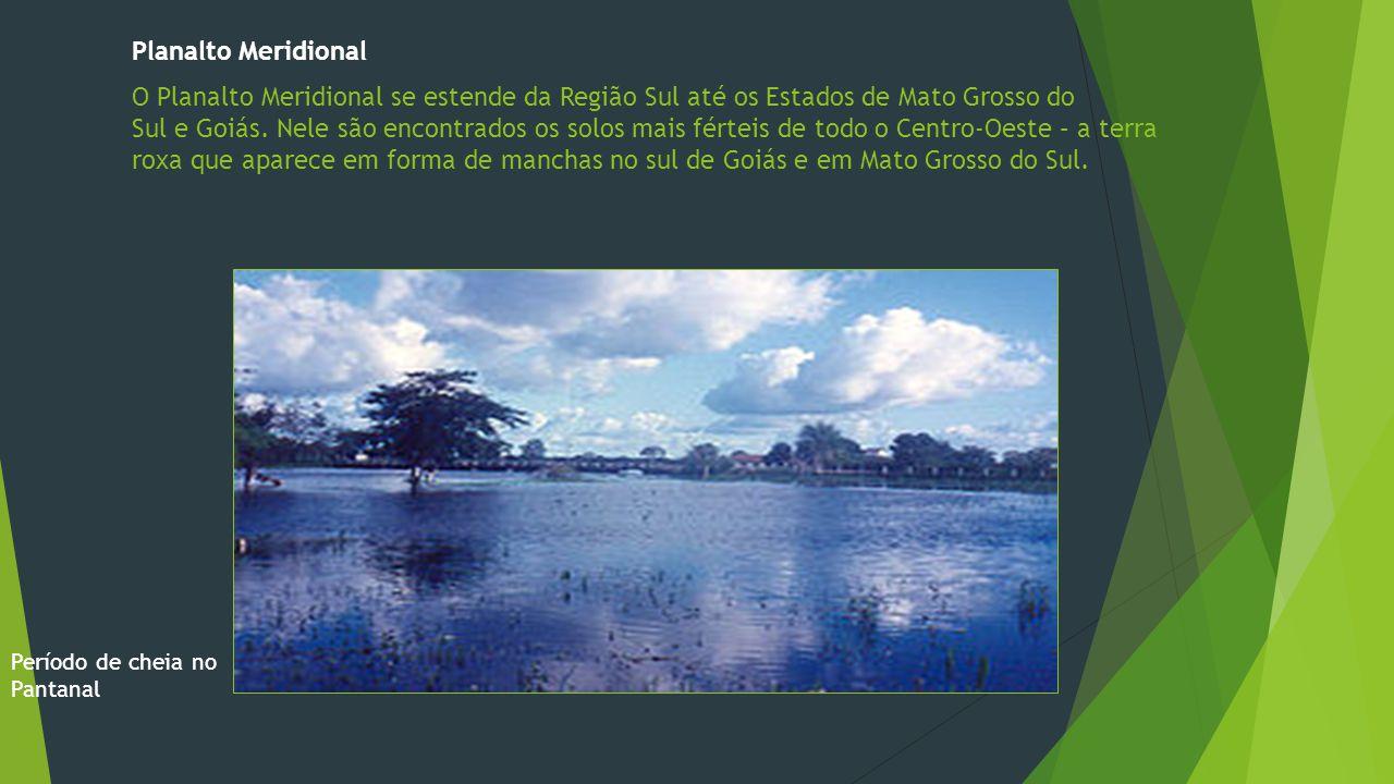 Planalto Meridional