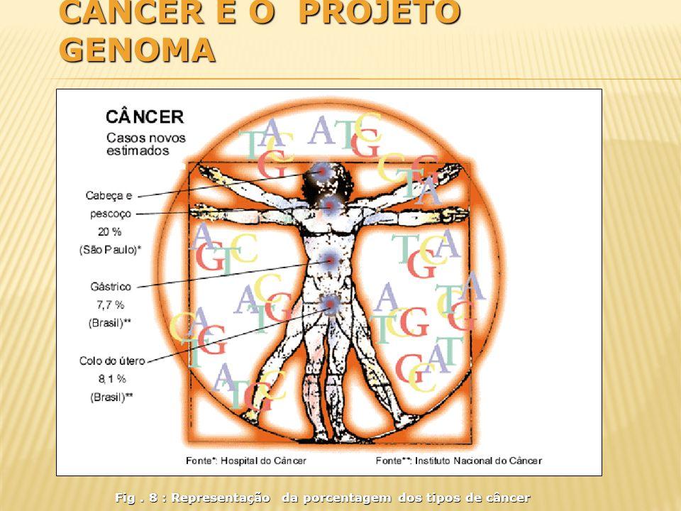Câncer e o Projeto Genoma