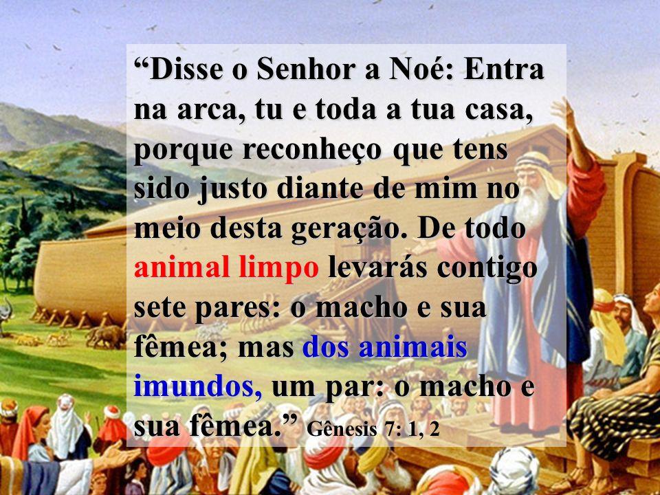 Disse o Senhor a Noé: Entra na arca, tu e toda a tua casa, porque reconheço que tens sido justo diante de mim no meio desta geração.
