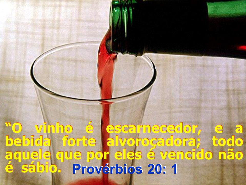 O vinho é escarnecedor, e a bebida forte alvoroçadora; todo aquele que por eles é vencido não é sábio.