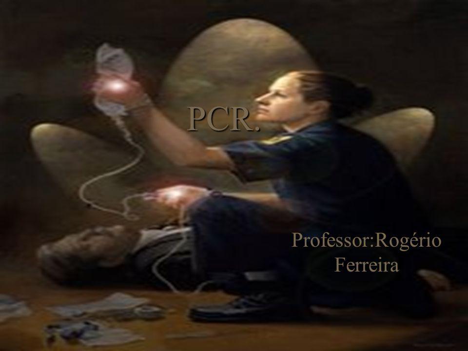 Professor:Rogério Ferreira