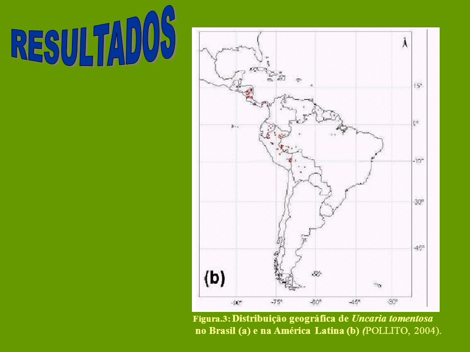 RESULTADOS no Brasil (a) e na América Latina (b) (POLLITO, 2004).