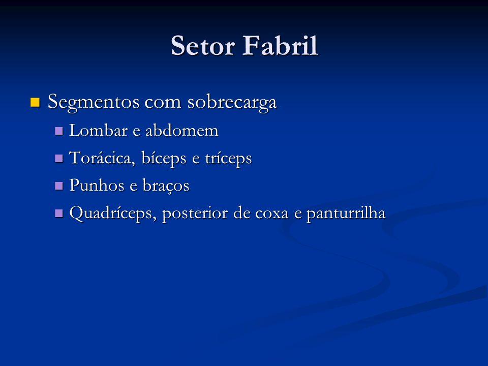 Setor Fabril Segmentos com sobrecarga Lombar e abdomem