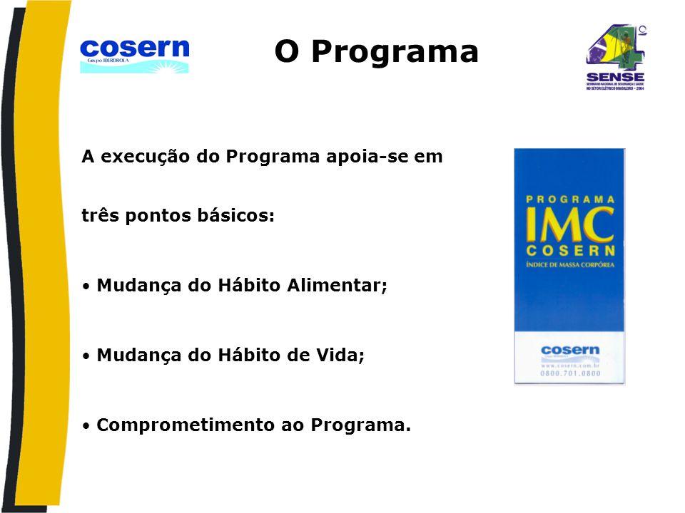 O Programa A execução do Programa apoia-se em três pontos básicos: