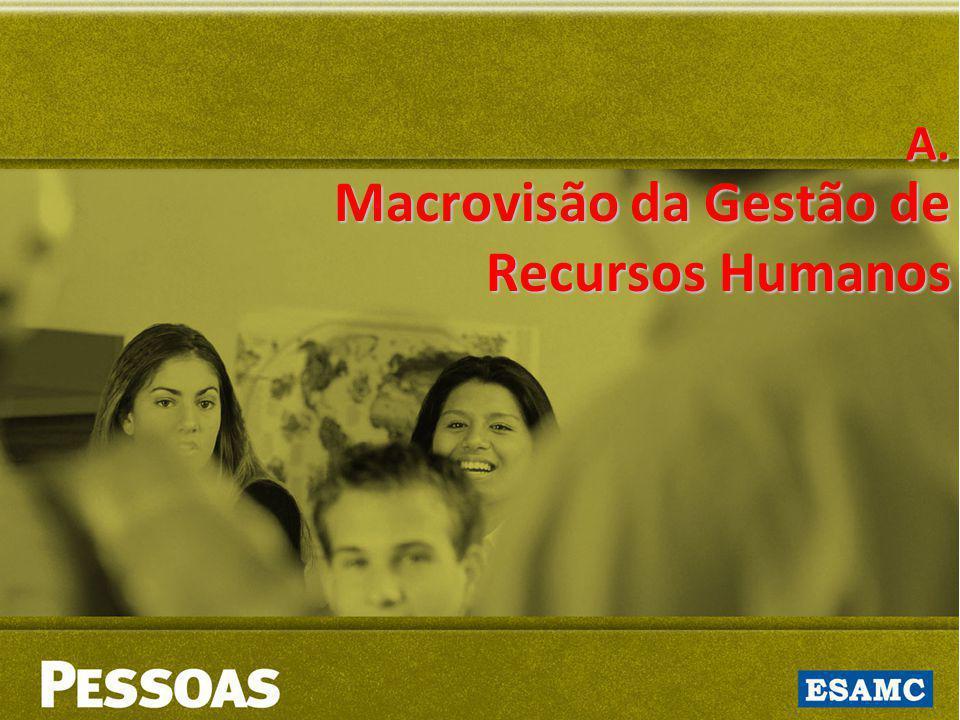 Macrovisão da Gestão de Recursos Humanos