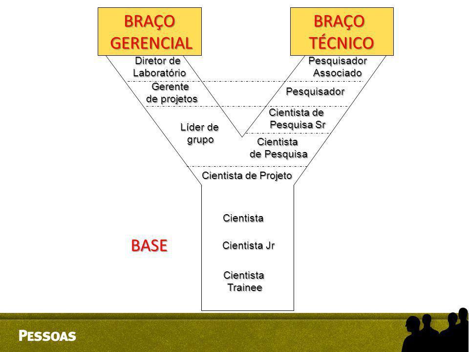 BRAÇO GERENCIAL BRAÇO TÉCNICO BASE Diretor de Laboratório Pesquisador
