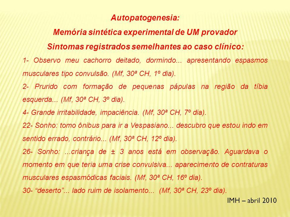 Memória sintética experimental de UM provador