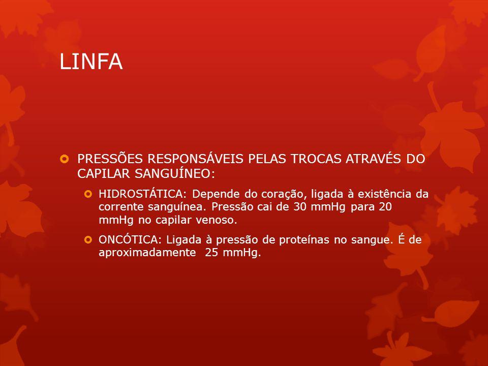 LINFA PRESSÕES RESPONSÁVEIS PELAS TROCAS ATRAVÉS DO CAPILAR SANGUÍNEO: