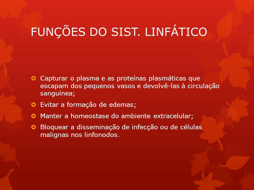 FUNÇÕES DO SIST. LINFÁTICO