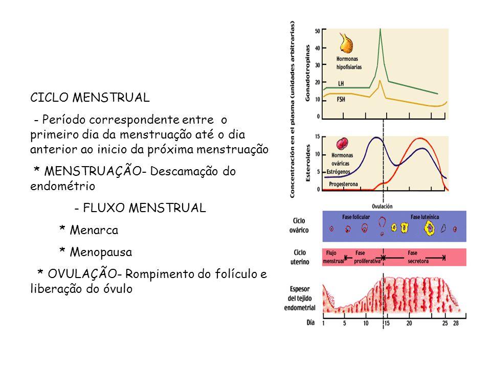 CICLO MENSTRUAL - Período correspondente entre o primeiro dia da menstruação até o dia anterior ao inicio da próxima menstruação.
