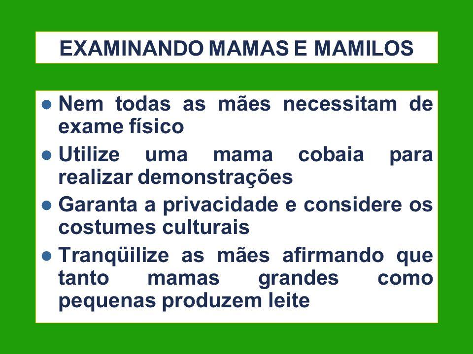 EXAMINANDO MAMAS E MAMILOS