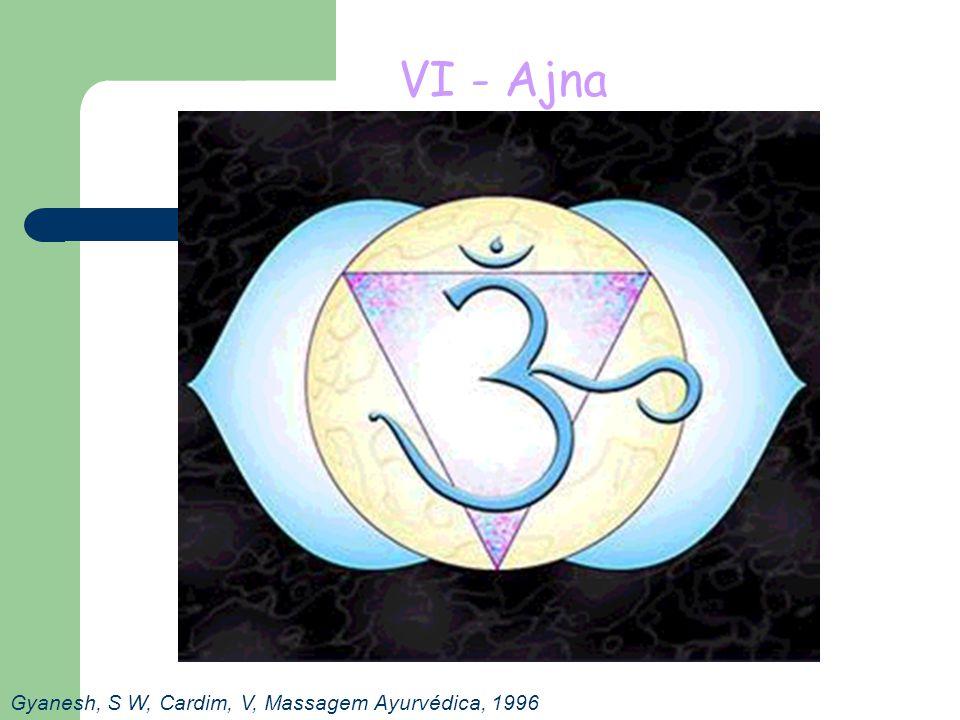 VI - Ajna Gyanesh, S W, Cardim, V, Massagem Ayurvédica, 1996
