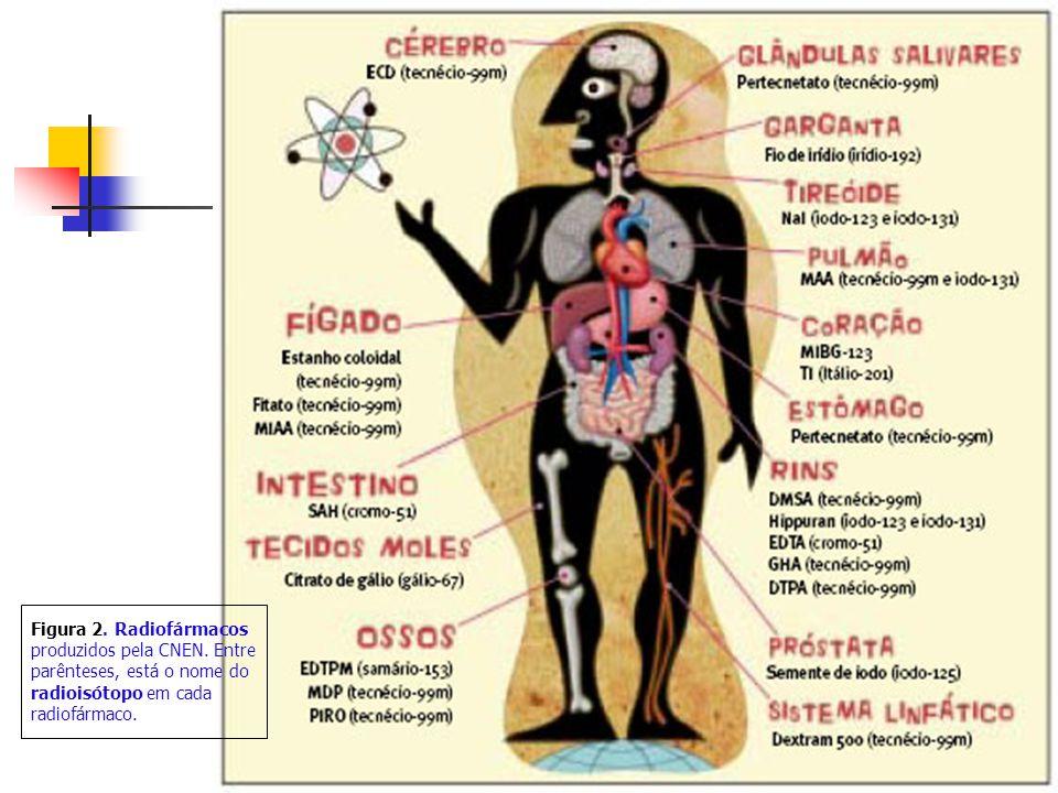 Figura 2. Radiofármacos produzidos pela CNEN