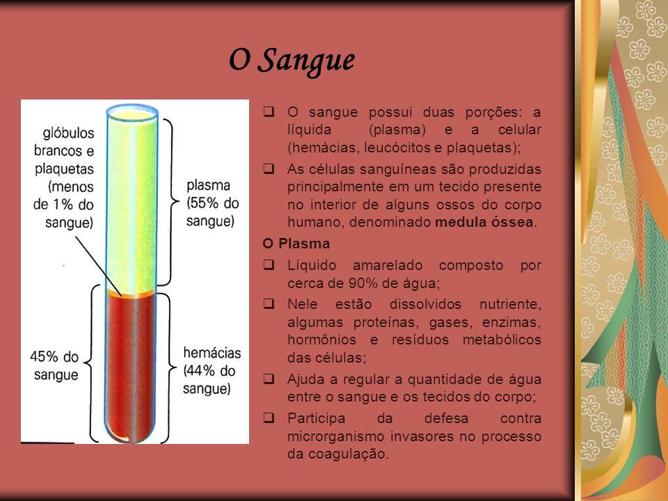 O Sangue O sangue possui duas porções: a líquida (plasma) e a celular (hemácias, leucócitos e plaquetas);