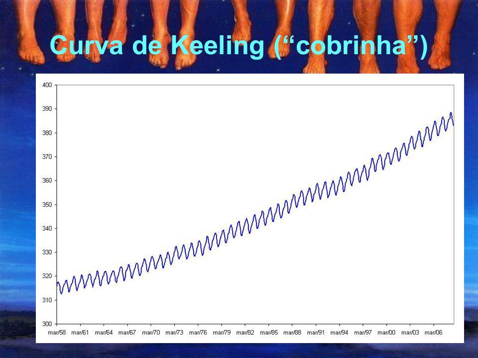 Curva de Keeling ( cobrinha )