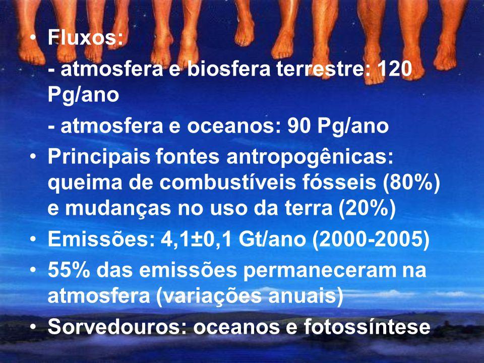 Fluxos: - atmosfera e biosfera terrestre: 120 Pg/ano. - atmosfera e oceanos: 90 Pg/ano.