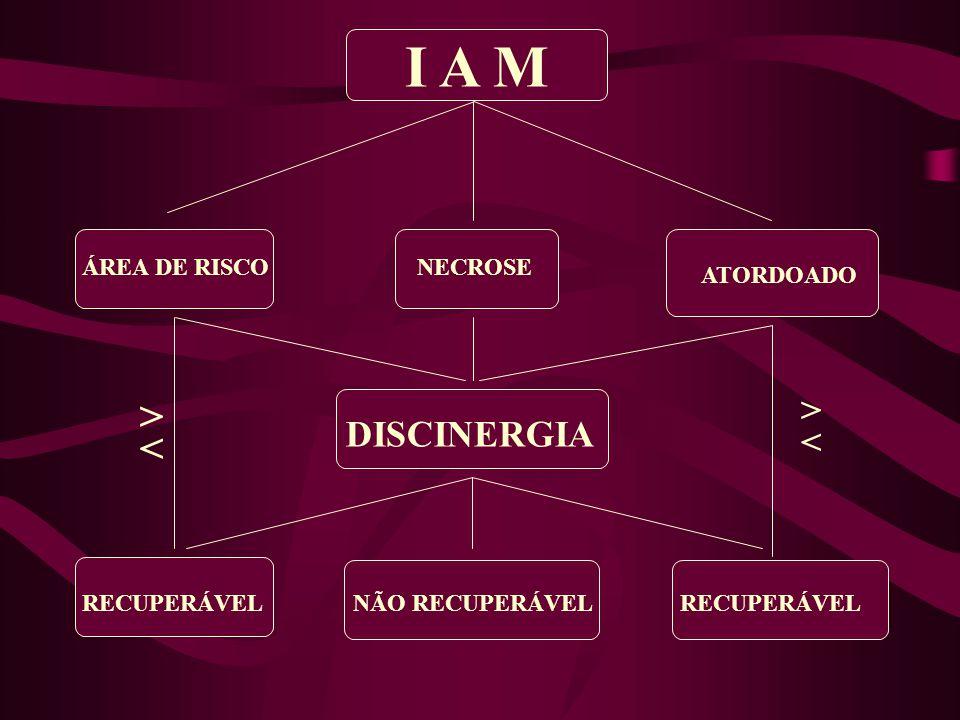 I A M > < > DISCINERGIA < ÁREA DE RISCO NECROSE ATORDOADO