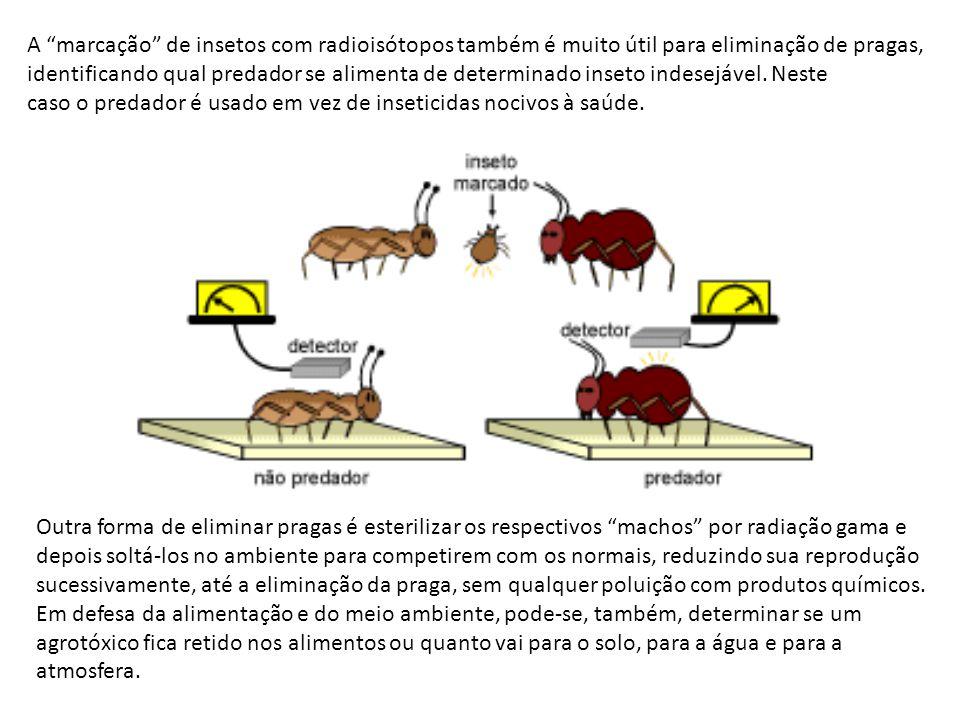 A marcação de insetos com radioisótopos também é muito útil para eliminação de pragas,