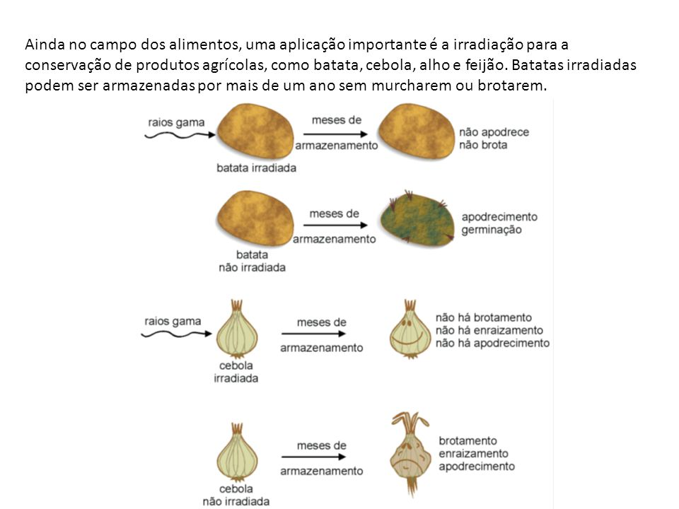 Ainda no campo dos alimentos, uma aplicação importante é a irradiação para a conservação de produtos agrícolas, como batata, cebola, alho e feijão.