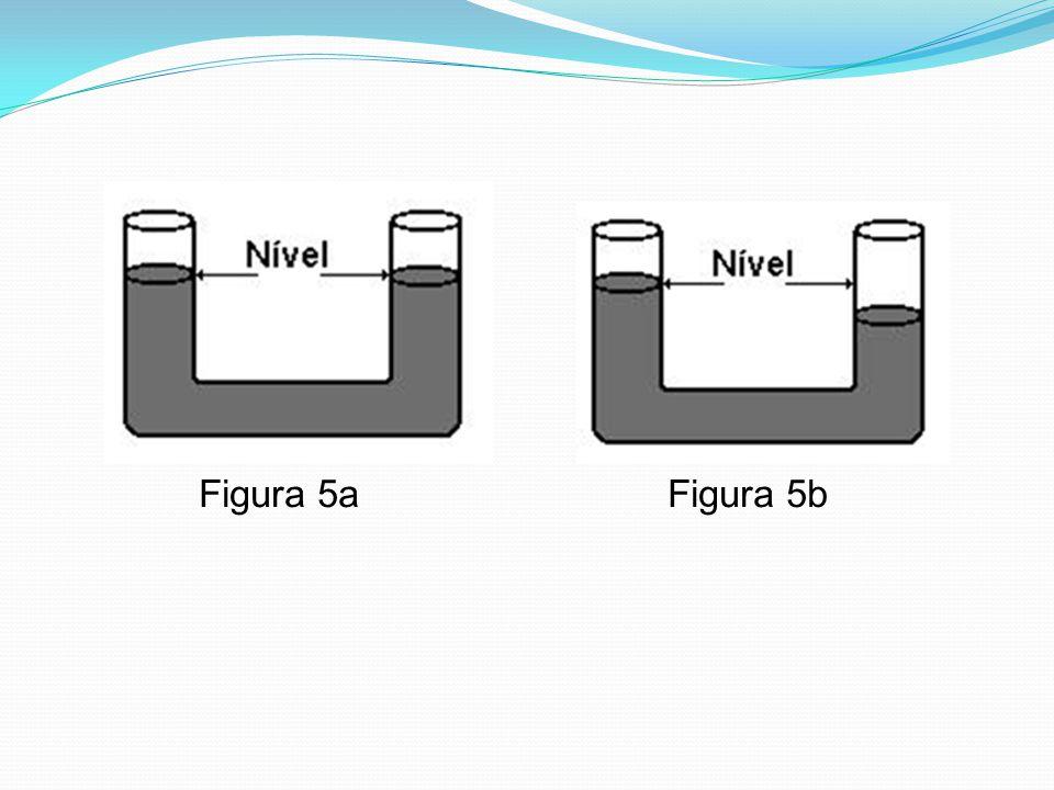 Figura 5a Figura 5b