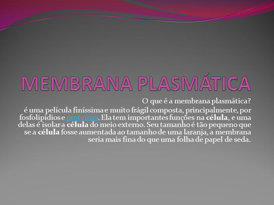 MEMBRANA PLASMÁTICA O que é a membrana plasmática
