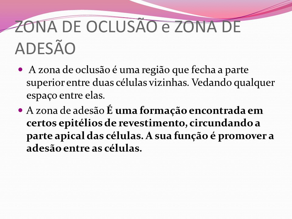ZONA DE OCLUSÃO e ZONA DE ADESÃO