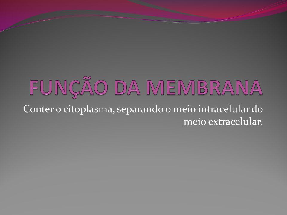 FUNÇÃO DA MEMBRANA Conter o citoplasma, separando o meio intracelular do meio extracelular.